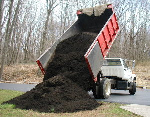 Southeastern Tree and Debris: Top Soil delivery